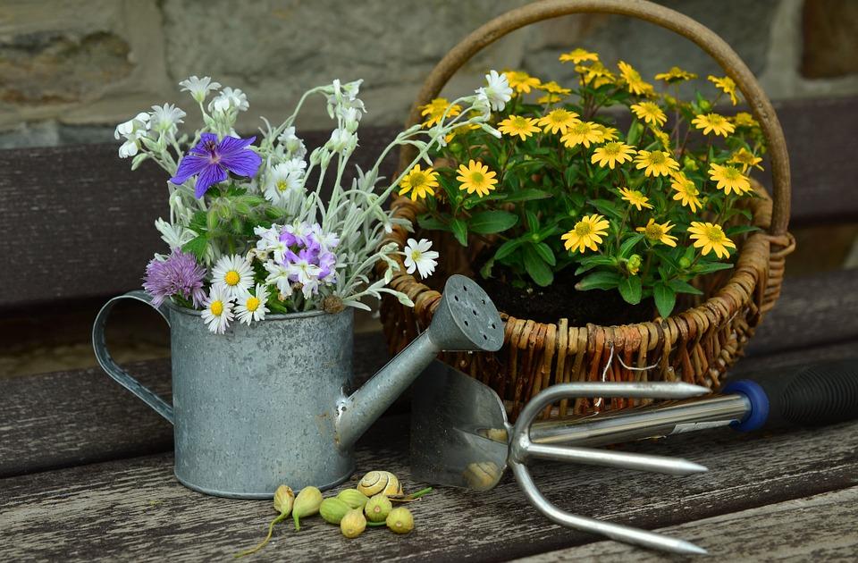 Comment faire une belle composition de fleurs séchées?